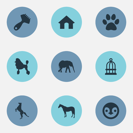 Elements Safari, Hippodrome, Curly Puppy And Other Synonyms Prison, Pet And Footprint.  Vector Illustration Set Of Simple Animals Icons. Illustration