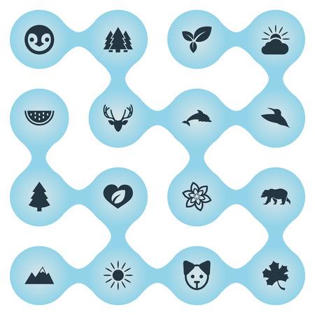 要素のムース、植物、鳥や他の類義語シイラ犬とローズ。 簡単エコ アイコンのベクター イラスト セット。  イラスト・ベクター素材