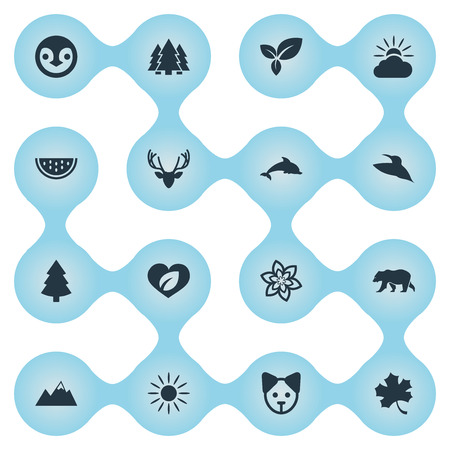Elements Moose, Plant, Bird And Other Synonyms Dorado, Canine And Rose.  Vector Illustration Set Of Simple Ecology Icons.