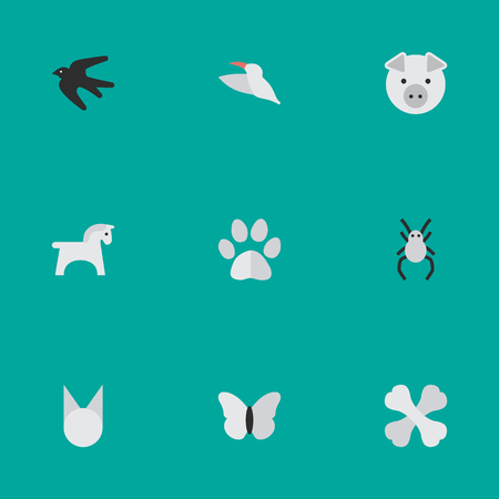 Elements Tarantula, Piggy, Cat And Other Synonyms Hoof, Moth And Horse.  Vector Illustration Set Of Simple Fauna Icons. Illustration
