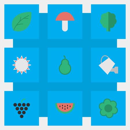 Elementen Bailer, Sunny, wijn en andere synoniemen Zon, papier en blik. Vectorillustratiereeks Eenvoudige het Tuinieren Pictogrammen.