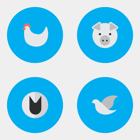 Elements Pigeon, Tomcat, Piggy And Other Synonyms Tomcat, Swine And Cock.  Vector Illustration Set Of Simple Animals Icons.
