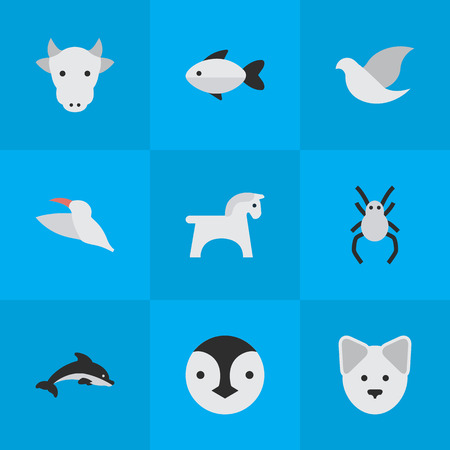 Vector Illustration Set Of Simple Wild Icons. Elements Wolf, Tarantula, Fish And Other Synonyms Pet, Dolphin And Perch.