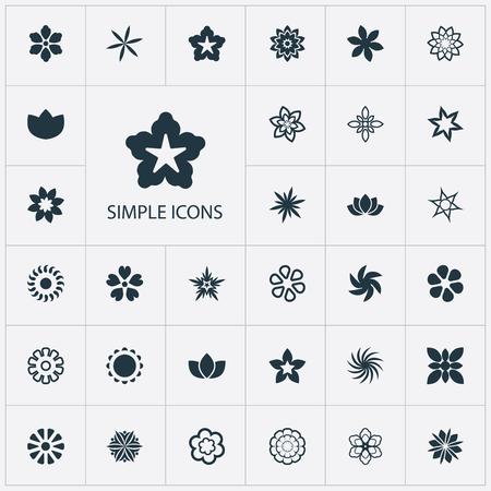 シンプルなアイコンのベクター イラスト セット。要素シタキソウ、アスター、小花、他の同義語水仙サイプレスとガーベラ。