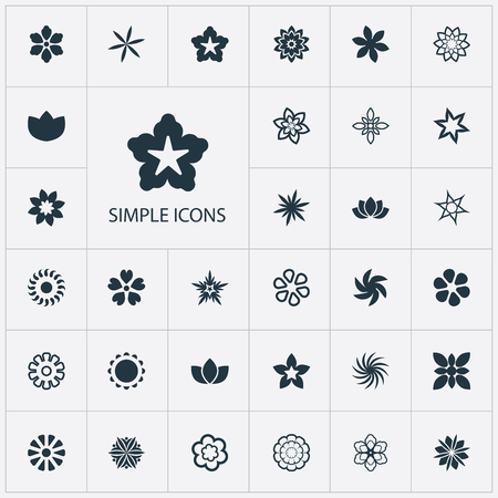 Vector Illustration Set Of Simple  Icons. Elements Stephanotis, Aster, Floret And Other Synonyms Daffodils, Cypress And Gerberas. Illustration