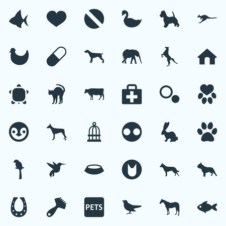 Elements Piglet, Stallion, Chicken And Other Synonyms Beak, Australian And Hummingbird.  Vector Illustration Set Of Simple Wild Icons.