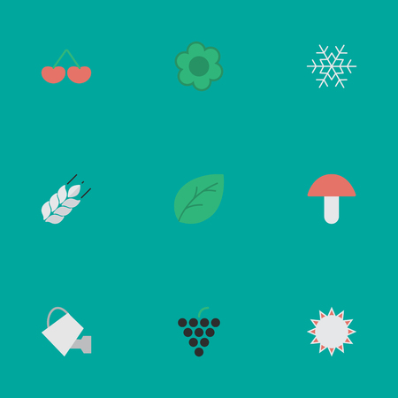Vector Illustration Set Of Simple Gardening Icons. Elements Wine, Bailer, Sheet And Other Synonyms Wheat, Fungus And Sheet. Illustration