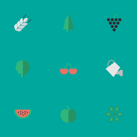 Vector Illustration Set Of Simple Horticulture Icons. Elements Fruit, Bailer, Corn And Other Synonyms Watering, Cherry And Wheat. Illustration