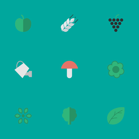Vector Illustration Set Of Simple Horticulture Icons. Elements Fungus, Blossom, Flower And Other Synonyms Forest, Fungus And Corn.