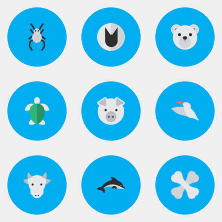 Vector Illustration Set Of Simple Fauna Icons. Elements Tomcat, Turtle, Skeleton And Other Synonyms Bones, Animal And Widow.