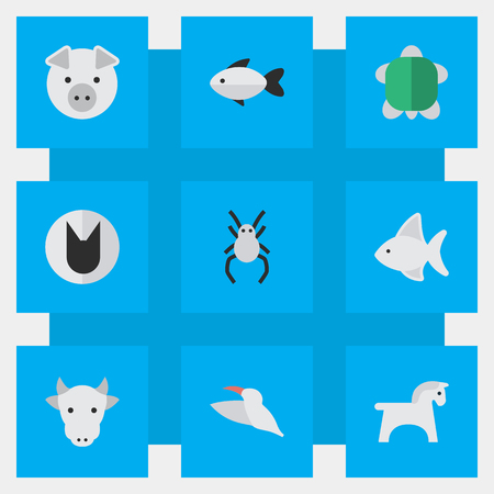 Vector Illustration Set Of Simple Animals Icons. Elements Tortoise, Steed, Tarantula And Other Synonyms Tortoise, Animal And Milk. Illustration