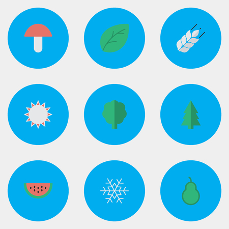 Vector Illustration Set Of Simple Garden Icons. Elements Flake Of Snow, Fungus, Corn And Other Synonyms Pear, Sheet And Sunny.