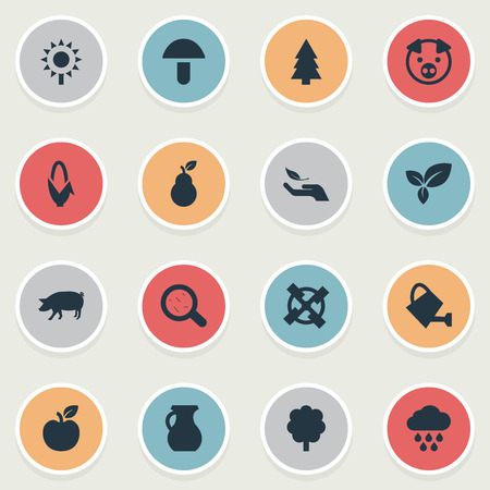 Vector Illustration Set Of Simple Energy Icons. Elements Duchess, Foliage, Seeds And Other Synonyms Swine, Flour And Can.