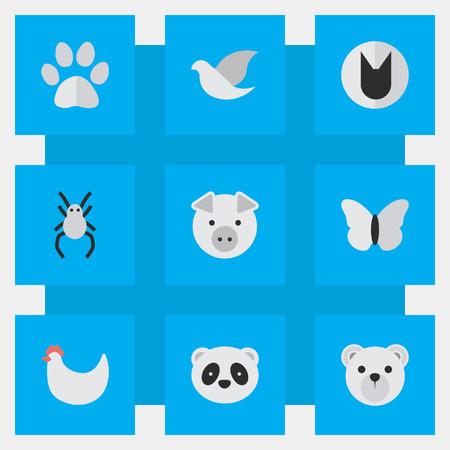 Vector Illustration Set Of Simple Zoo Icons. Elements Tomcat, Piggy , Panda Synonyms Swine, Bird And Tomcat. Illustration