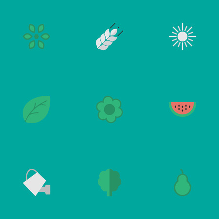 Vector Illustration Set Of Simple Horticulture Icons. Elements Flower, Melon, Wood And Other Synonyms Forest, Punching And Corn.