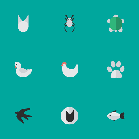 Vector Illustration Set Of Simple Wild Icons. Elements Tarantula, Tomcat, Swan And Other Synonyms Tarantula, Foot And Fish.