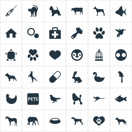 Vector Illustration Set Of Simple Wild Icons. Elements Cat, Hair Brush, Pooch And Other Synonyms Banner, Poodle And Bannerfish.