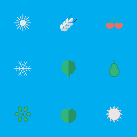 Vector Illustration Set Of Simple Gardening Icons. Elements Flake Of Snow, Punching Bag, Fruit And Other Synonyms Snowflake, Snow And Corn.