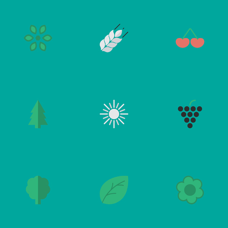 Vector Illustration Set Of Simple Horticulture Icons. Elements Corn, Blossom, Sheet And Other Synonyms Wood, Pot And Bread.