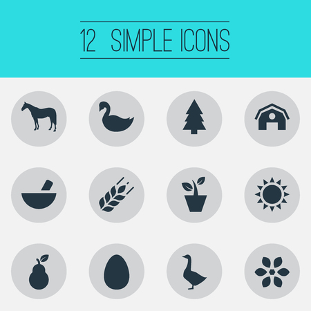 Vector Illustration Set Of Simple Nature Icons. Elements Mallard, Spruce, Zebra And Other Synonyms Hen, Egg And Sunshine.
