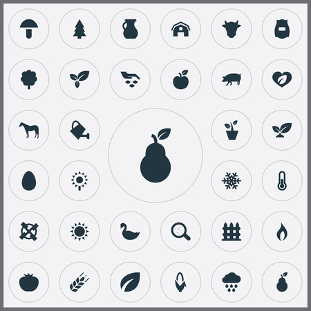 Vector Illustration Set Of Simple  Icons. Elements Champignon, Goose, Easter And Other Synonyms Farmhouse, Fruit And Pig.