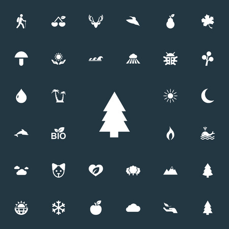 Vector Illustration Set Of Simple Natural Icons. Elements Winter, Nature Protection, Travel And Other Synonyms Fruits, Wing And Dog.