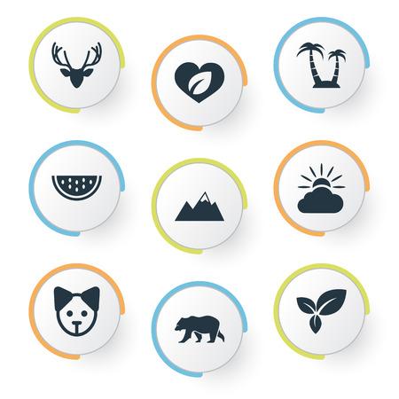シンプルな自然アイコンのベクター イラスト セット。要素葉、犬、マスクメロン、他の同義語は、熊、犬とピナクルします。