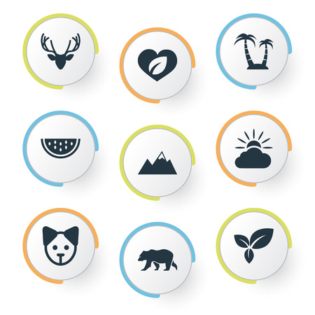 Vector Illustration Set Of Simple Natural Icons. Elements Leaf, Canine, Cantaloupe And Other Synonyms Bear, Dog And Pinnacle. Ilustração
