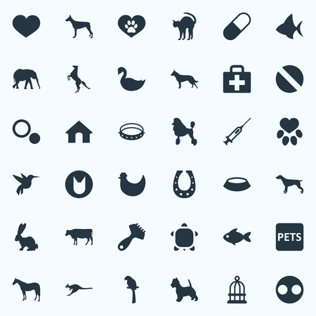 Vector Illustration Set Of Simple Zoo Icons. Elements Hair Brush, First Aid, Doghouse And Other Synonyms Curly, Fish And Injection.