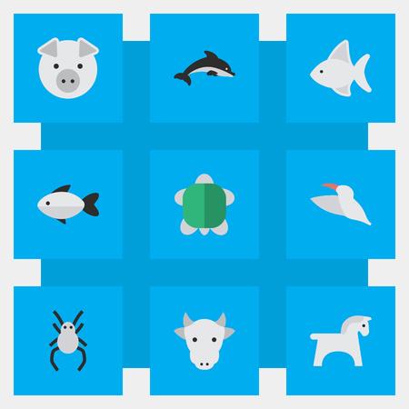 벡터 일러스트 레이 션 간단한 동물 군 아이콘의 집합입니다. 요소 크레인, 거북이, 돼지 및 다른 동의어 미망인, 거미 및 거북이. 일러스트
