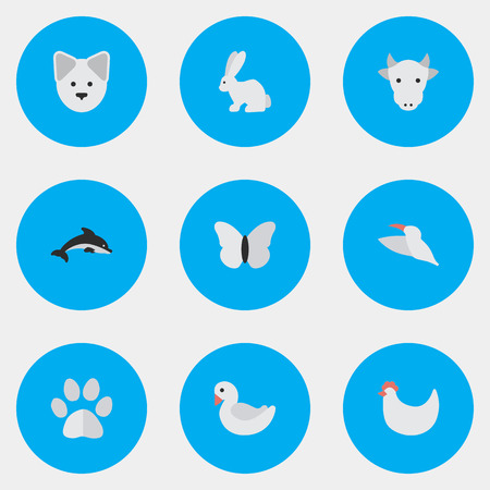 Elements Fish, Wolf, Swan And Other Synonyms Moth, Dolphin And Cock.  Vector Illustration Set Of Simple Animals Icons.