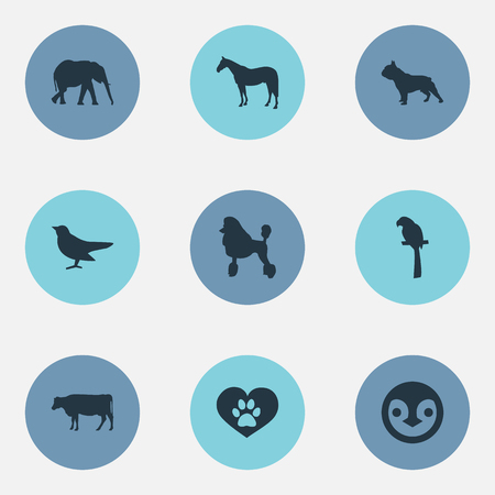 Elements Stallion, Dairy Farm, Wildlife And Other Synonyms Penguin, Bird And Cow.  Vector Illustration Set Of Simple Animals Icons. Illustration