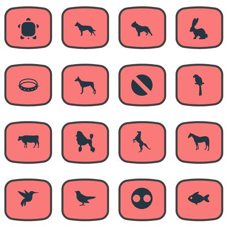 요소 곱슬 강아지, 유제품 농장, 거북이 및 기타 동의어 보안, 해양 및 암말. 벡터 일러스트 레이 션 간단한 야생 아이콘의 집합입니다. 일러스트