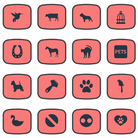 Vector Illustration Set Of Simple Zoo Icons. Elements Hummingbird, Wildlife, Drug And Other Synonyms Bird, Banner And Colibri.