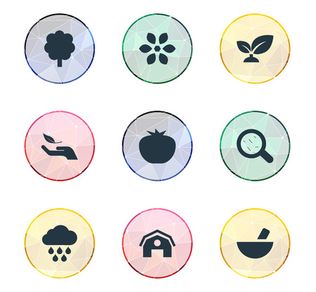 Vector Illustration Set Of Simple Nature Icons. Elements Storm, Plant, Blossom And Other Synonyms Vegetables, Storm And Weather.