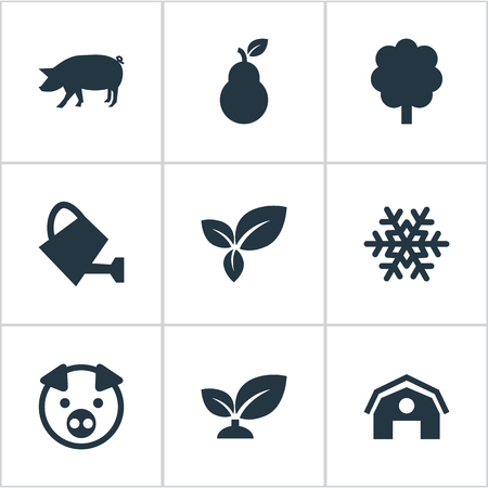 Illustration Set Of Simple Ecology Icons. Elements Soil, Duchess, Swine And Other Synonyms Duchess, Winter And Life. Illustration