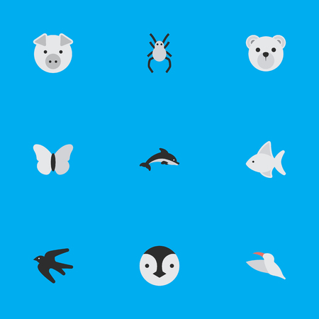 Elements Crane, Tarantula, Fish And Other Synonyms Crane, Swallow And Animal.  Vector Illustration Set Of Simple Wild Icons.