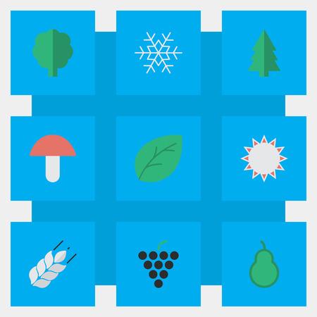 요소 펀치 백, 써니, 옥수수 및 기타 동의어 와인, 나무 및 찌 질. 벡터 일러스트 레이 션 간단한 정원 아이콘의 집합입니다.