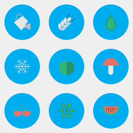 Elements Flake Of Snow, Berry, Punching Bag And Other Synonyms Can, Wheat And Boletus.  Vector Illustration Set Of Simple Gardening Icons.