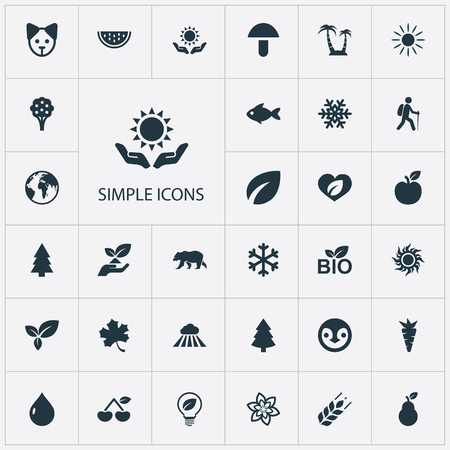 Set Of Simple Bio Icons. Çizim