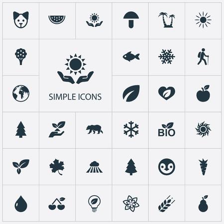 Set Of Simple Bio Icons. Illustration