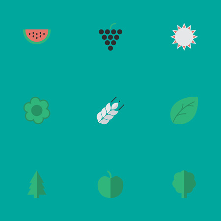 Set Of Simple Garden Icons. Elements Wood, Wine, Flower And Other Synonyms Paper, Flower And Leaflet.