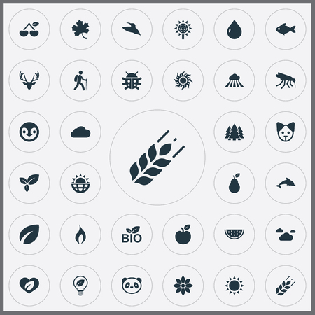 Set Of Simple Ecology Icons.