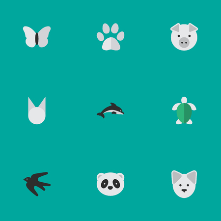 gray whale: Set Of Simple Wild Icons.