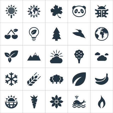 Conjunto De Iconos Naturales Simples. Elementos Planeta, Energía Solar, Pájaro Y Otros Sinónimos Pájaro, Cumbre E Inflamar. Foto de archivo - 84057625