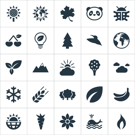 Set Of Simple Natural Icons. Elements Planet, Solar Energy, Bird And Other Synonyms Bird, Summit And Ignite. Illustration