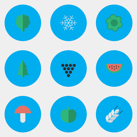Vector Illustration Set Of Simple Horticulture Icons. Elements Melon, Wood, Flake Of Snow And Other Synonyms Snow, Berry And Wineglass.