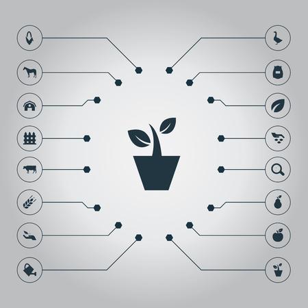 Vector illustratie Set van eenvoudige pictogrammen. Elementen Hertogin, Maïs, Barrière en andere synoniemen Zebra, dier en maïs.