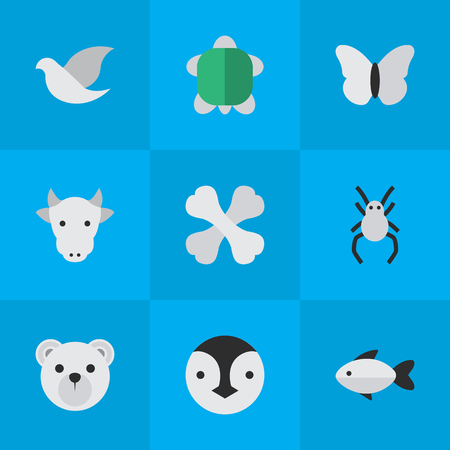 Vector Illustration Set Of Simple Zoo Icons. Elements Skeleton, Panda , Pigeon Synonyms Flightless, Butterfly And Tarantula.