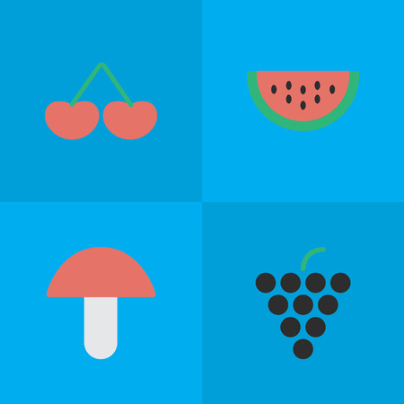 Elements Melon, Wine, Berry And Other Synonyms Berry, Boletus And Grape.  Vector Illustration Set Of Simple Garden Icons.